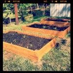 Gardening 004